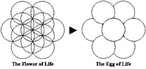 The Egg of life - Sacred Geometry - Jelila - www.jelila.com - Light Language Sacred Geometry Healing    Online