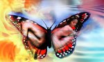 Change is but a flutter away - Jelila - Light Language and Chakra Balancing Online and in Person - www.jelila.com - Butterfly People
