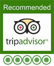 Highly Recommended on Trip Advisor:  Jelila, 5*****.  'Safe, Trusted and Wise' 'Amazing' 'My Ketut Liyer' 'A Real Healer'.